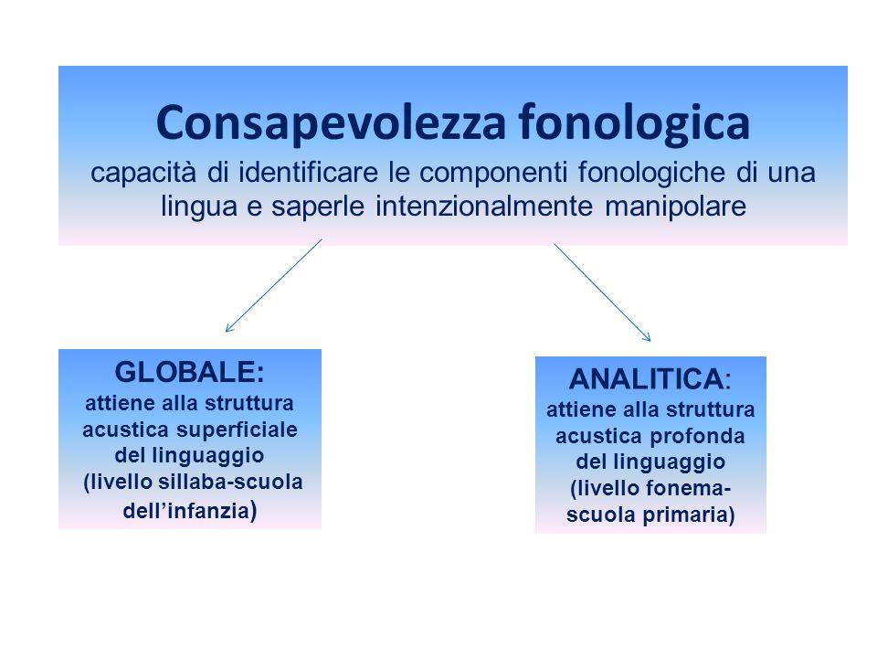 Consapevolezza fonologica capacità di identificare le componenti fonologiche di una lingua e saperle intenzionalmente manipolare ANALITICA: attiene al
