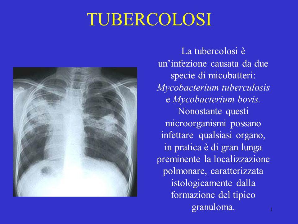 1 TUBERCOLOSI La tubercolosi è un'infezione causata da due specie di micobatteri: Mycobacterium tuberculosis e Mycobacterium bovis. Nonostante questi