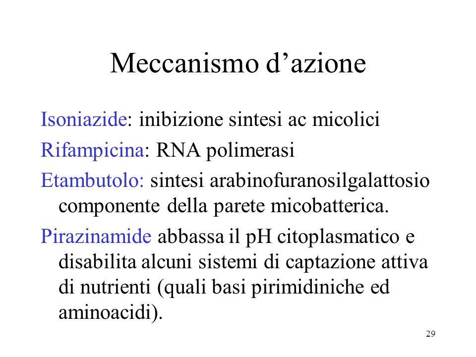 Meccanismo d'azione Isoniazide: inibizione sintesi ac micolici Rifampicina: RNA polimerasi Etambutolo: sintesi arabinofuranosilgalattosio componente d