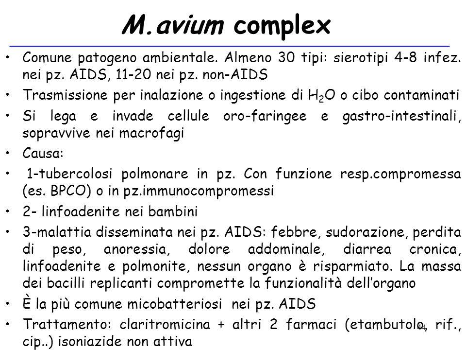 44 M.avium complex Comune patogeno ambientale. Almeno 30 tipi: sierotipi 4-8 infez. nei pz. AIDS, 11-20 nei pz. non-AIDS Trasmissione per inalazione o