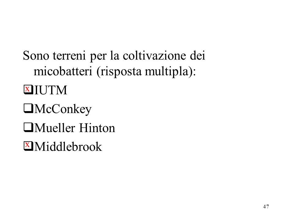 47 Sono terreni per la coltivazione dei micobatteri (risposta multipla):  IUTM  McConkey  Mueller Hinton  Middlebrook x x