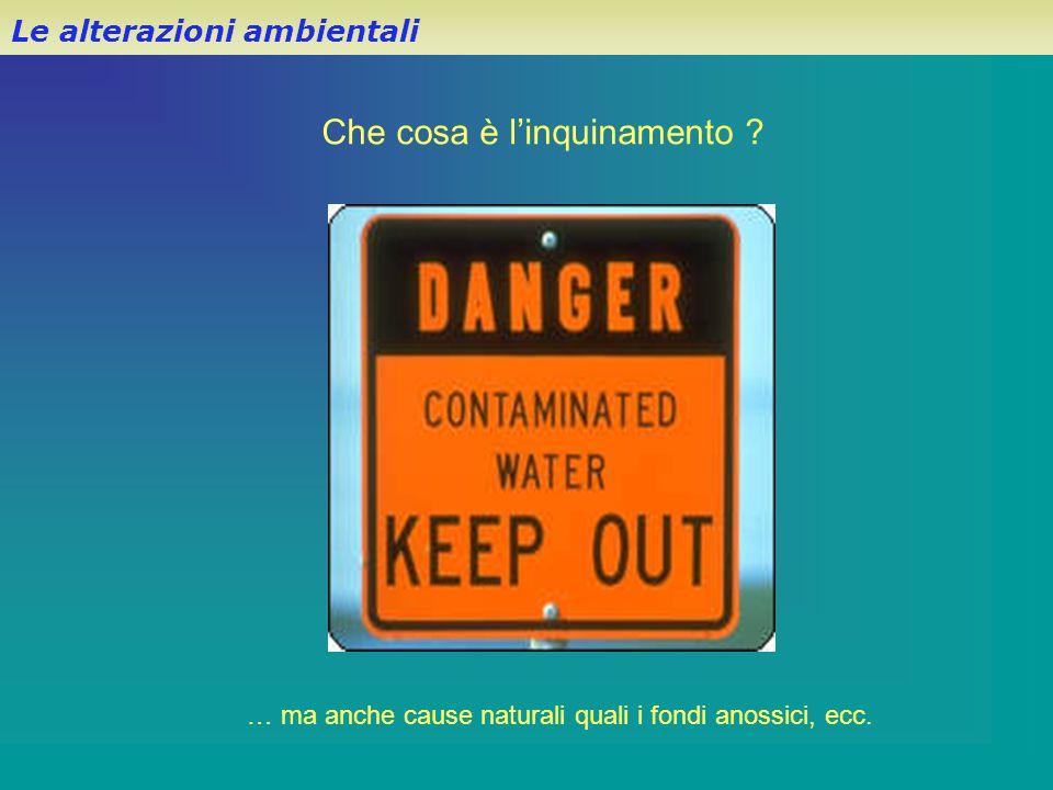 Le alterazioni ambientali Che cosa è l'inquinamento ? … ma anche cause naturali quali i fondi anossici, ecc.