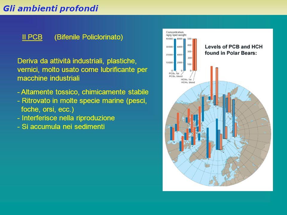 Il PCB (Bifenile Policlorinato) Gli ambienti profondi Deriva da attività industriali, plastiche, vernici, molto usato come lubrificante per macchine i