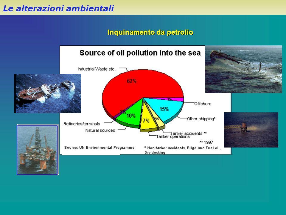 Inquinamento da petrolio Le alterazioni ambientali
