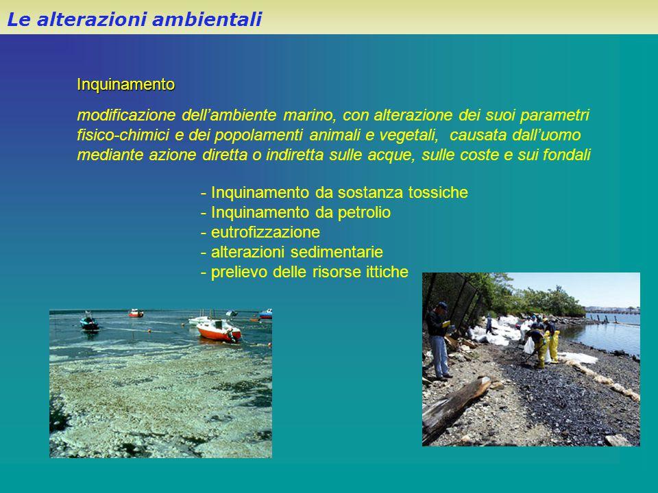 Le alterazioni ambientali modificazione dell'ambiente marino, con alterazione dei suoi parametri fisico-chimici e dei popolamenti animali e vegetali,