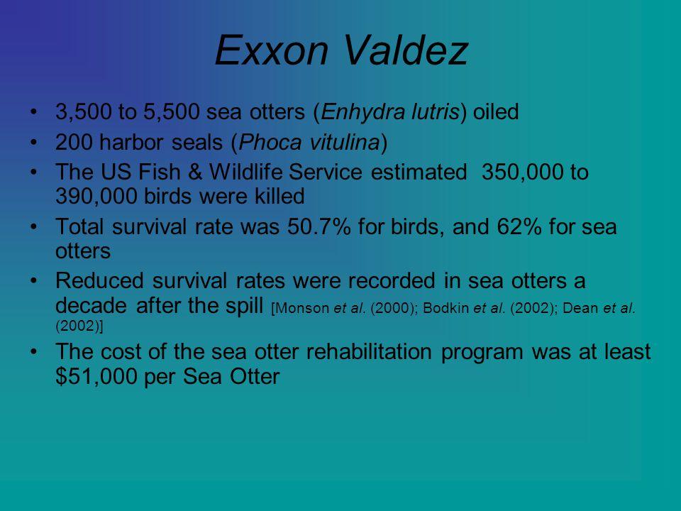 Exxon Valdez 3,500 to 5,500 sea otters (Enhydra lutris) oiled 200 harbor seals (Phoca vitulina) The US Fish & Wildlife Service estimated 350,000 to 39