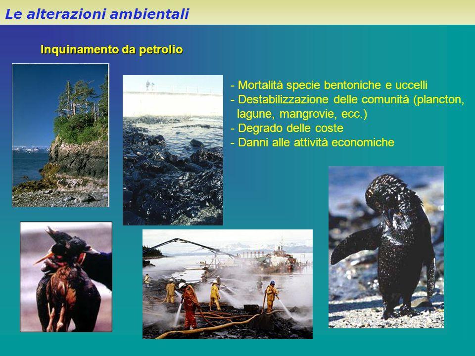Inquinamento da petrolio - Mortalità specie bentoniche e uccelli - Destabilizzazione delle comunità (plancton, lagune, mangrovie, ecc.) - Degrado dell