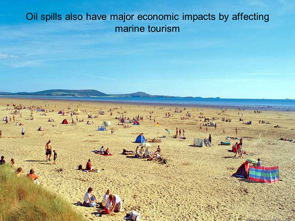 Oil spills also have major economic impacts by affecting marine tourism