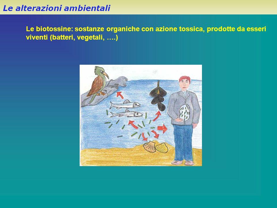 Le alterazioni ambientali Le biotossine: sostanze organiche con azione tossica, prodotte da esseri viventi (batteri, vegetali, ….)