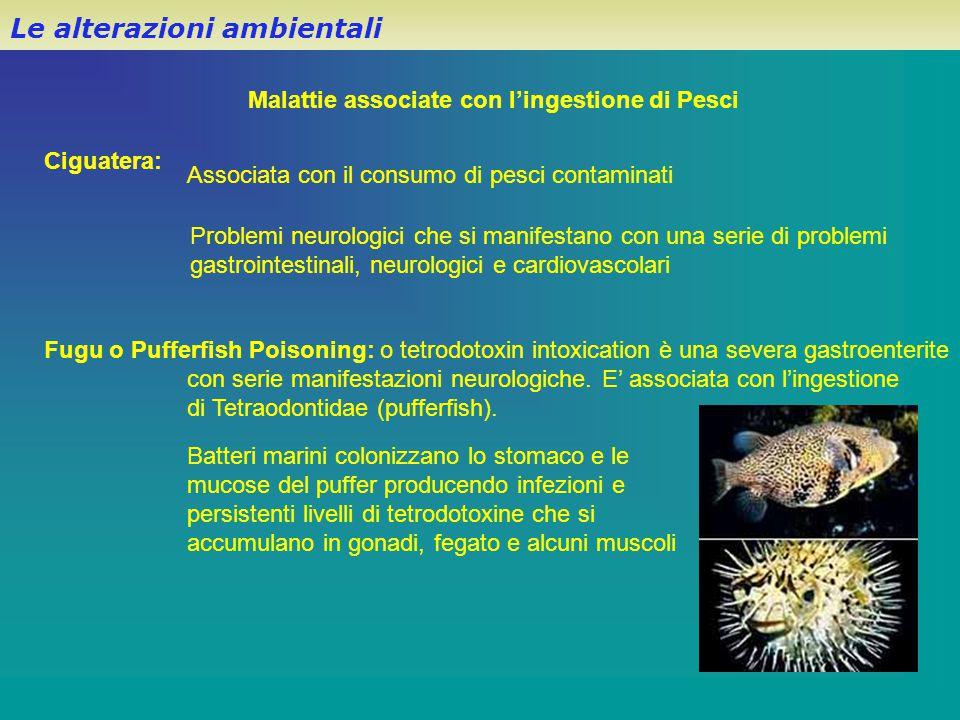 Malattie associate con l'ingestione di Pesci Le alterazioni ambientali Ciguatera: Associata con il consumo di pesci contaminati Problemi neurologici c