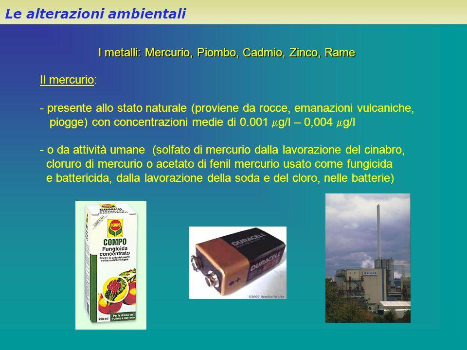 Le alterazioni ambientali I metalli: Mercurio, Piombo, Cadmio, Zinco, Rame Il mercurio: - presente allo stato naturale (proviene da rocce, emanazioni