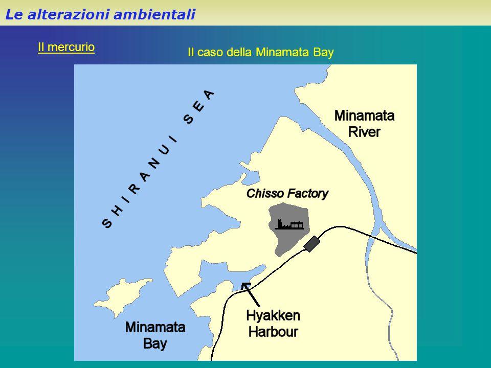 Le alterazioni ambientali Il mercurio Il caso della Minamata Bay
