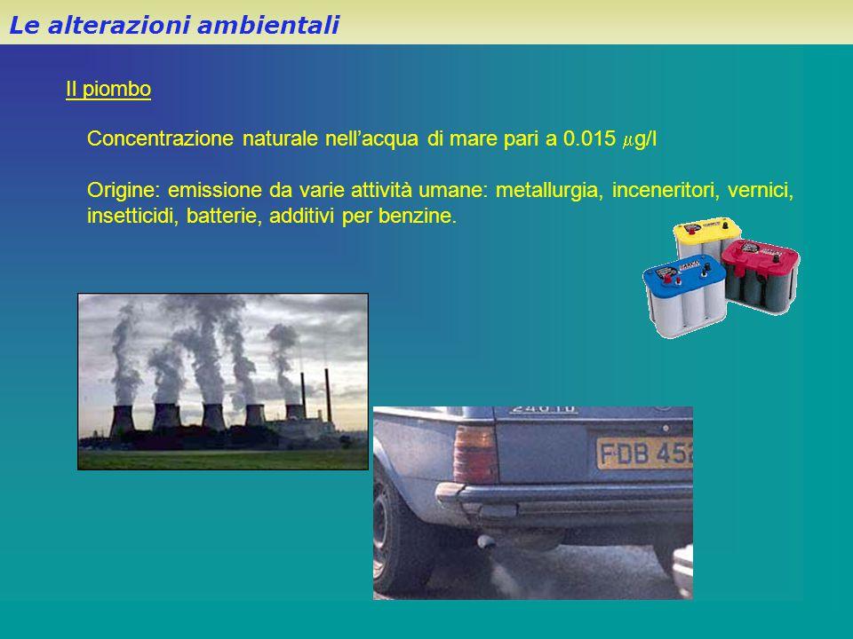 Il piombo Le alterazioni ambientali Concentrazione naturale nell'acqua di mare pari a 0.015  g/l Origine: emissione da varie attività umane: metallur
