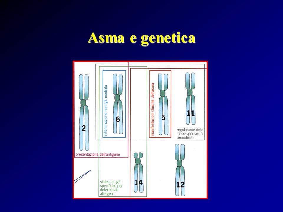 Asma e genetica