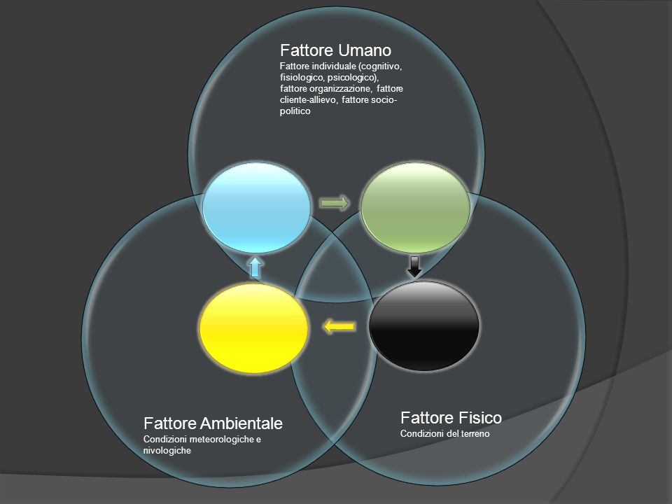 Fattore Umano Fattore individuale (cognitivo, fisiologico, psicologico), fattore organizzazione, fattore cliente-allievo, fattore socio- politico Fatt