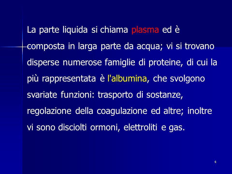 6 La parte liquida si chiama plasma ed è composta in larga parte da acqua; vi si trovano disperse numerose famiglie di proteine, di cui la più rappresentata è l albumina, che svolgono svariate funzioni: trasporto di sostanze, regolazione della coagulazione ed altre; inoltre vi sono disciolti ormoni, elettroliti e gas.