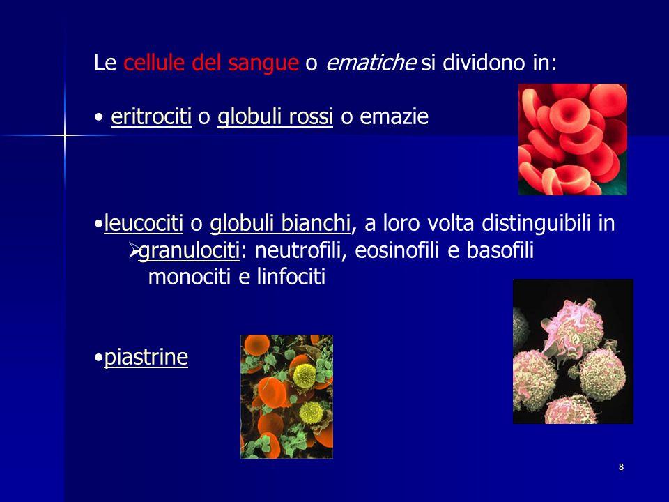 8 Le cellule del sangue o ematiche si dividono in: eritrociti o globuli rossi o emazieeritrocitiglobuli rossi leucociti o globuli bianchi, a loro volta distinguibili inleucocitiglobuli bianchi  granulociti: neutrofili, eosinofili e basofili granulociti monociti e linfociti piastrine