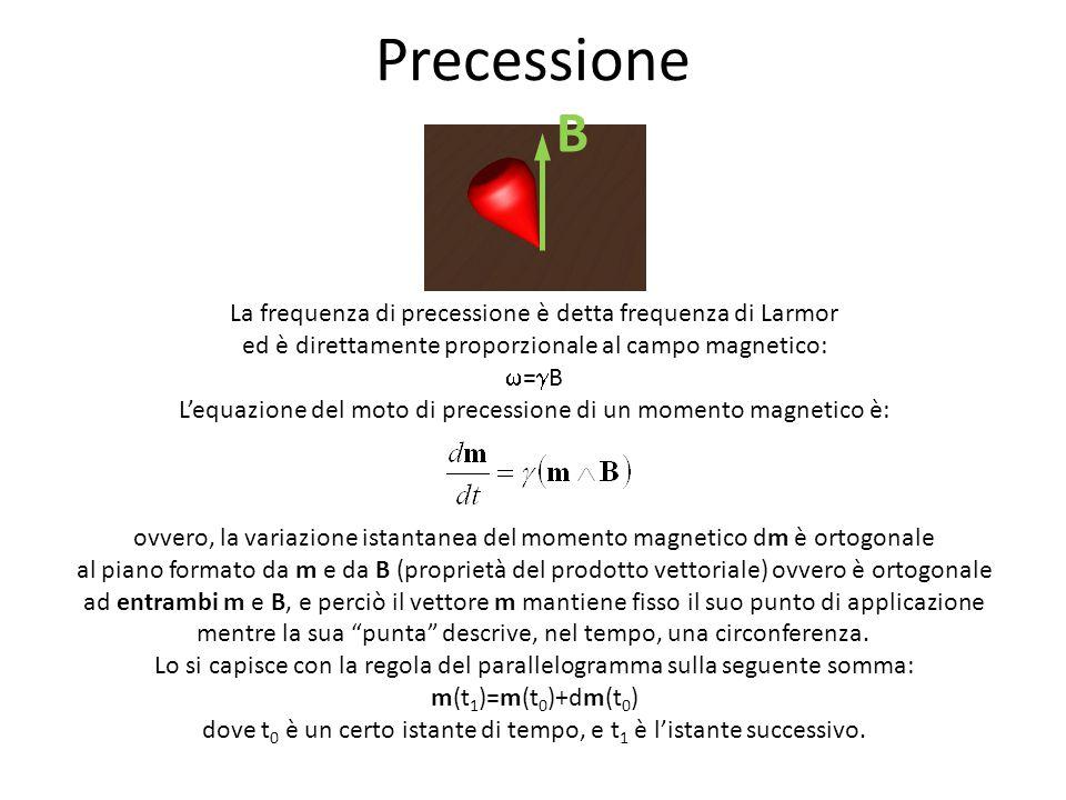 Precessione B La frequenza di precessione è detta frequenza di Larmor ed è direttamente proporzionale al campo magnetico:  =  B L'equazione del moto