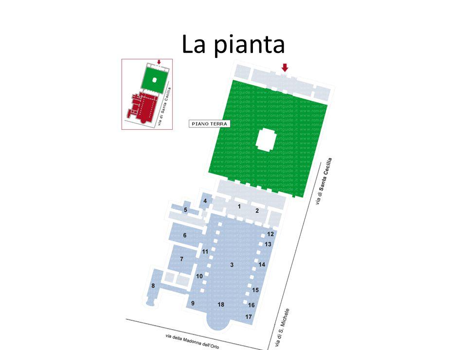 La pianta