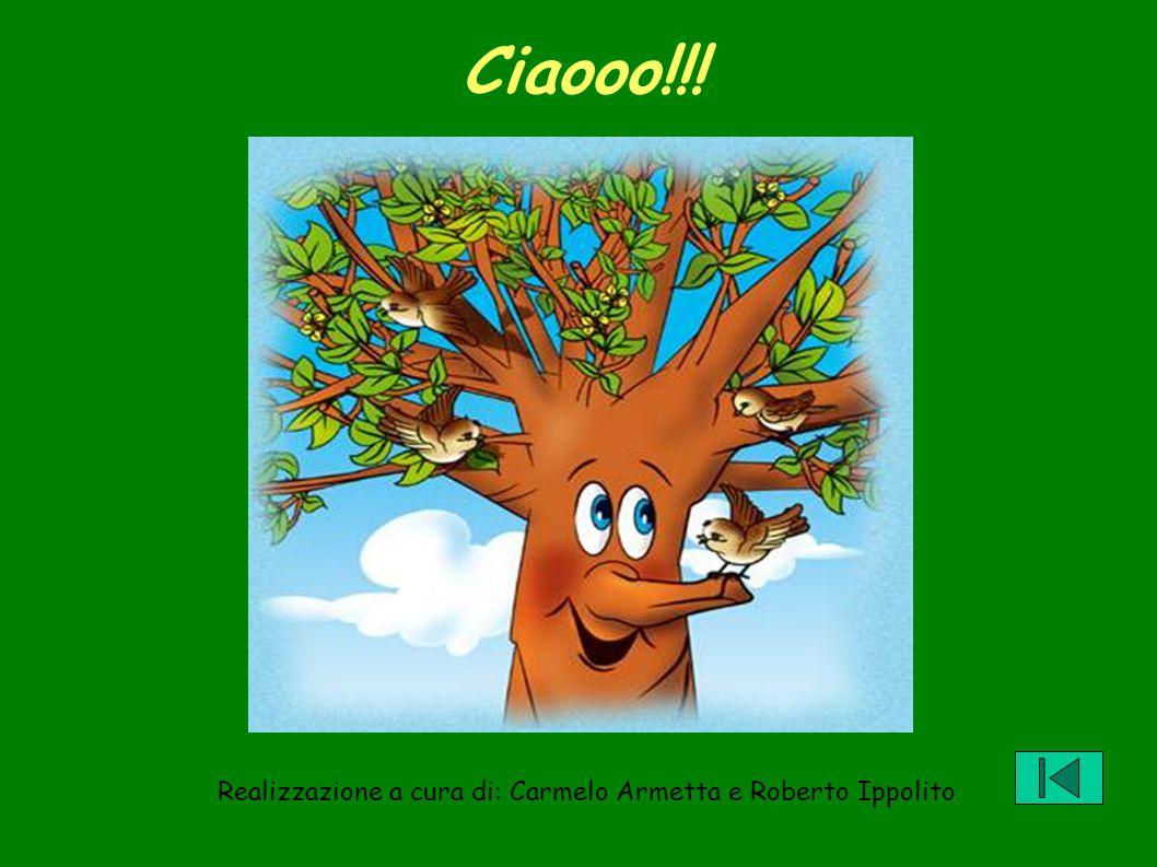 Ciaooo!!! Realizzazione a cura di: Carmelo Armetta e Roberto Ippolito