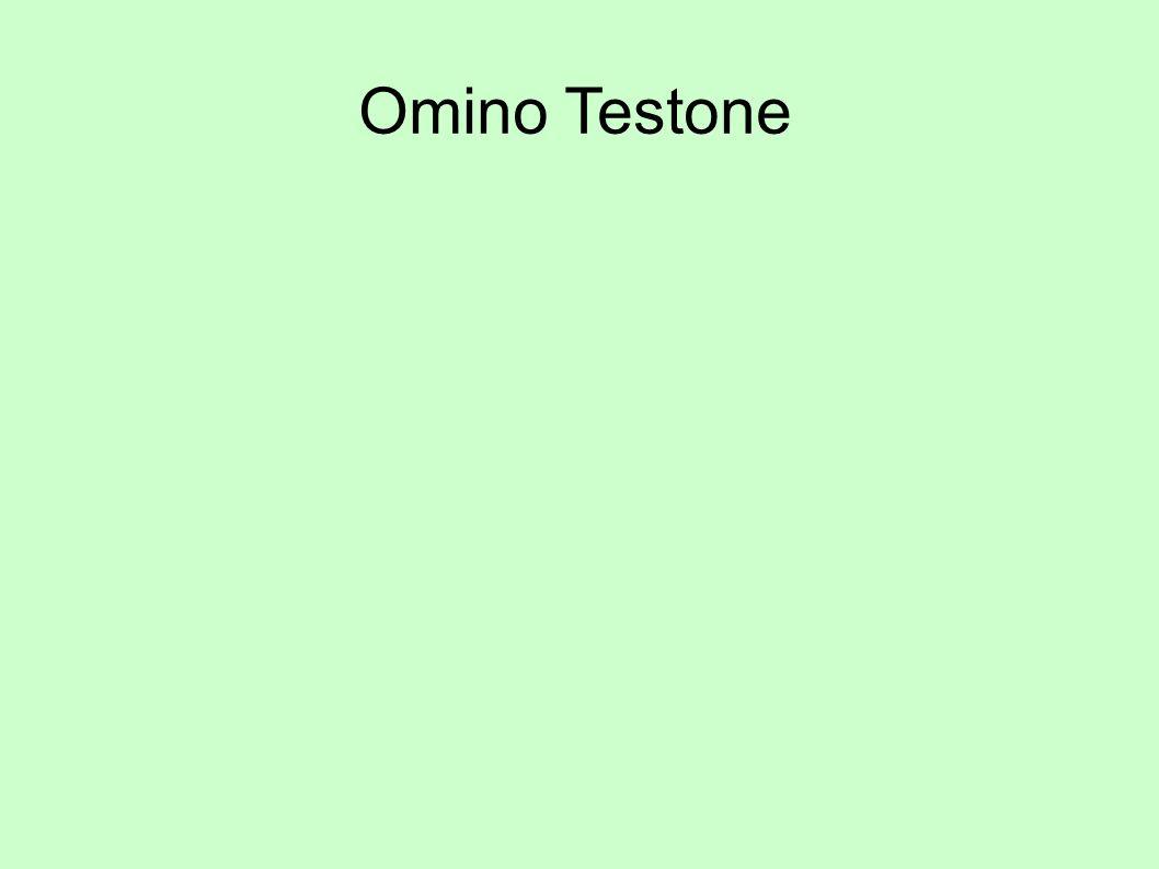 Omino Testone