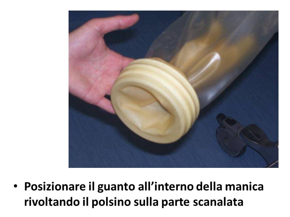 Posizionare il guanto all'interno della manica rivoltando il polsino sulla parte scanalata