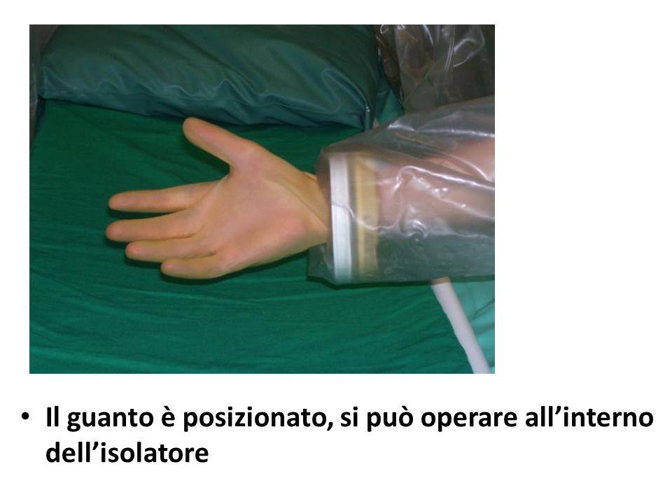 Il guanto è posizionato, si può operare all'interno dell'isolatore