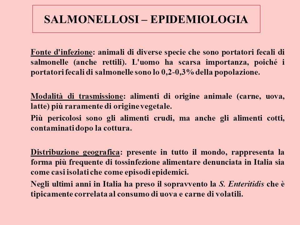 SALMONELLOSI – EPIDEMIOLOGIA Fonte d'infezione: animali di diverse specie che sono portatori fecali di salmonelle (anche rettili). L'uomo ha scarsa im