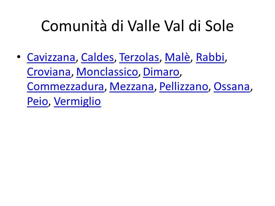 Comunità di Valle Val di Sole Cavizzana, Caldes, Terzolas, Malè, Rabbi, Croviana, Monclassico, Dimaro, Commezzadura, Mezzana, Pellizzano, Ossana, Peio, Vermiglio CavizzanaCaldesTerzolasMalèRabbi CrovianaMonclassicoDimaro CommezzaduraMezzanaPellizzanoOssana PeioVermiglio