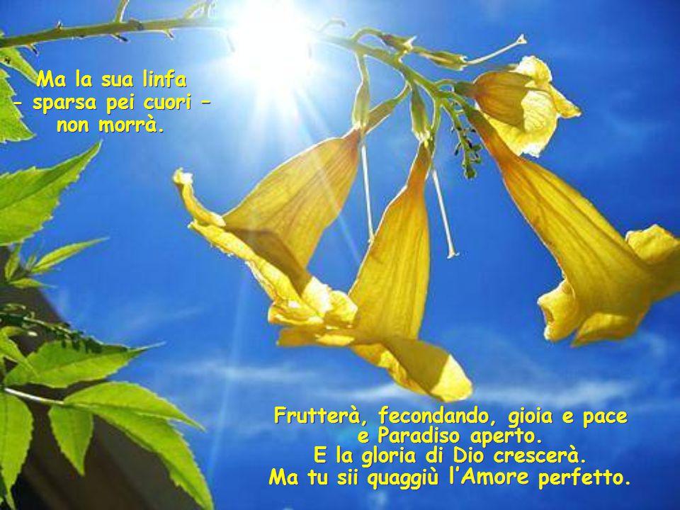 Frutterà, fecondando, gioia e pace e Paradiso aperto.