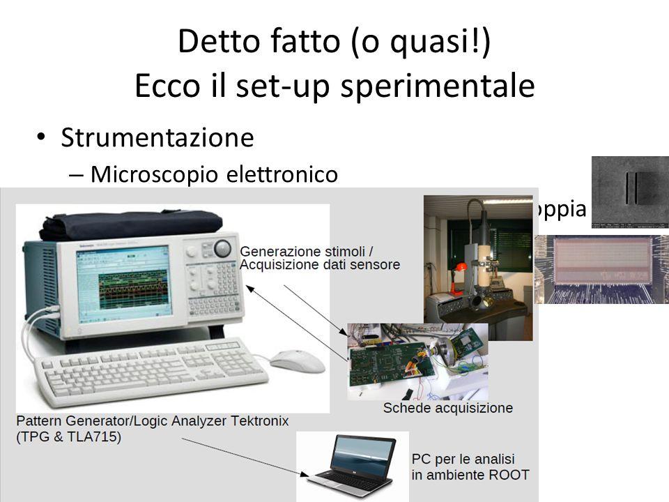 Strumentazione – Microscopio elettronico – Campioni (Reticoli di carbonio, microfili, doppia micro-fenditura) – Il sensore a pixel APSEL4D – Schede di