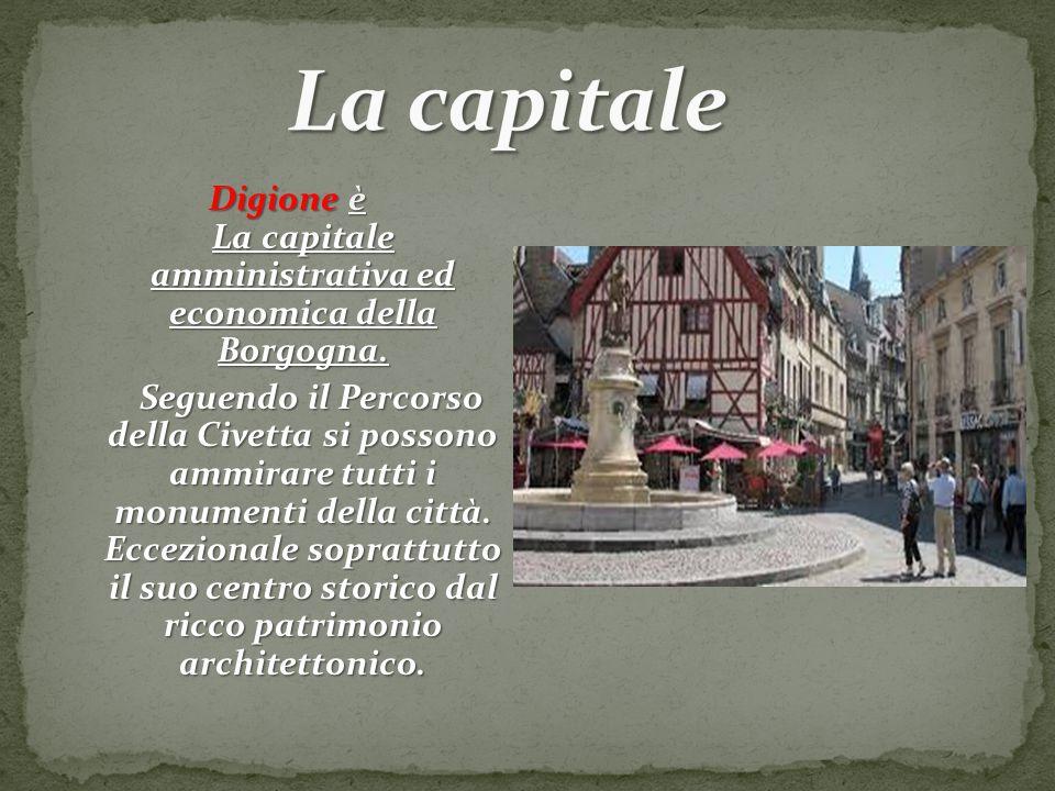 Digione è La capitale amministrativa ed economica della Borgogna. Seguendo il Percorso della Civetta si possono ammirare tutti i monumenti della città