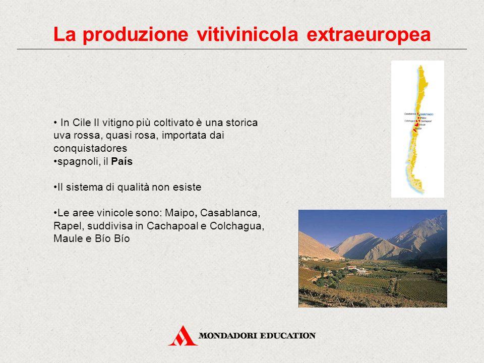La produzione vitivinicola extraeuropea In Cile Il vitigno più coltivato è una storica uva rossa, quasi rosa, importata dai conquistadores spagnoli, il País Il sistema di qualità non esiste Le aree vinicole sono: Maipo, Casablanca, Rapel, suddivisa in Cachapoal e Colchagua, Maule e Bío Bío