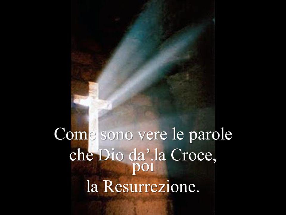 Come sono vere le parole che Dio da' la Croce, poi la Resurrezione.