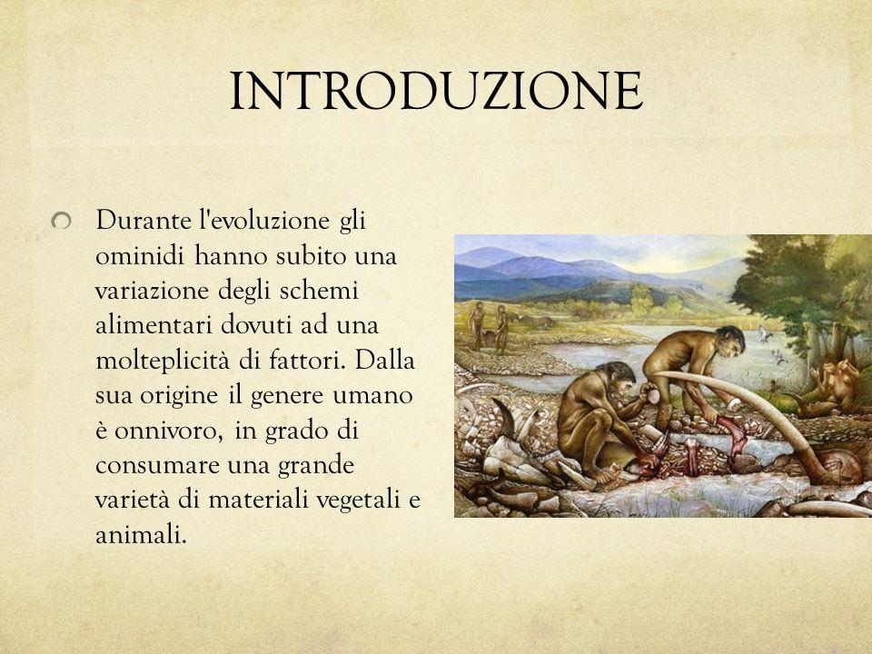 INTRODUZIONE Durante l'evoluzione gli ominidi hanno subito una variazione degli schemi alimentari dovuti ad una molteplicità di fattori. Dalla sua ori