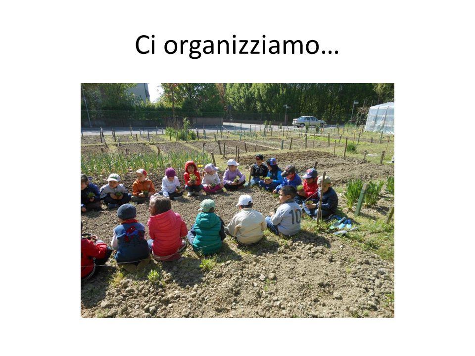 Ci organizziamo…