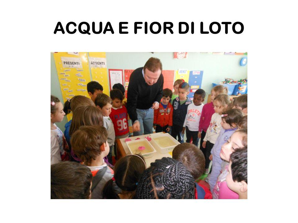 ED ECCO IL PRODOTTO FINALE LA GIOIA E LA SODDISFAZIONE E' BEN VISIBILE