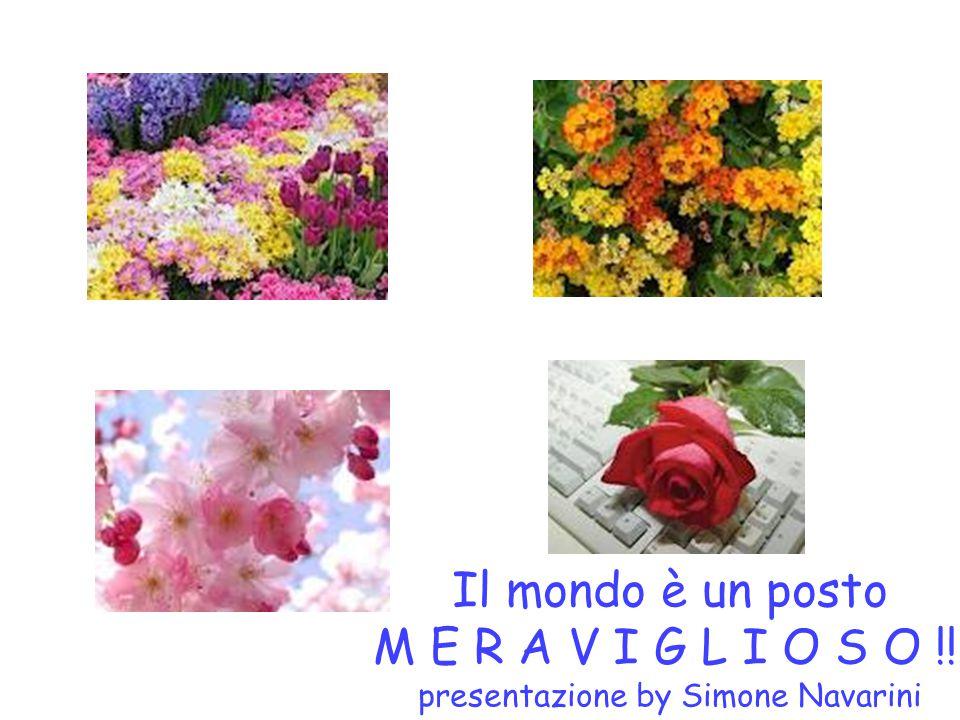 Il mondo è un posto M E R A V I G L I O S O !!! presentazione by Simone Navarini