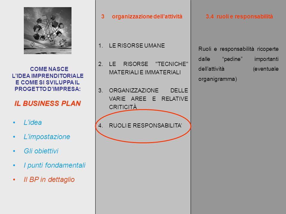 IL BUSINESS PLAN COME NASCE L'IDEA IMPRENDITORIALE E COME SI SVILUPPA IL PROGETTO D'IMPRESA: L'impostazione L'idea Gli obiettivi I punti fondamentali Il BP in dettaglio Ruoli e responsabilità ricoperte dalle pedine importanti dell'attività (eventuale organigramma) 3organizzazione dell'attività 1.LE RISORSE UMANE 2.LE RISORSE TECNICHE MATERIALI E IMMATERIALI 3.ORGANIZZAZIONE DELLE VARIE AREE E RELATIVE CRITICITÀ 4.RUOLI E RESPONSABILITA' 3.4ruoli e responsabilità