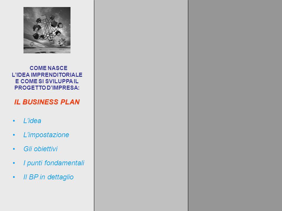 IL BUSINESS PLAN COME NASCE L'IDEA IMPRENDITORIALE E COME SI SVILUPPA IL PROGETTO D'IMPRESA: L'impostazione L'idea Gli obiettivi I punti fondamentali Il BP in dettaglio