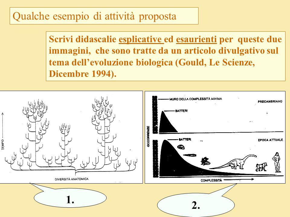 Qualche esempio di attività proposta Scrivi didascalie esplicative ed esaurienti per queste due immagini, che sono tratte da un articolo divulgativo s