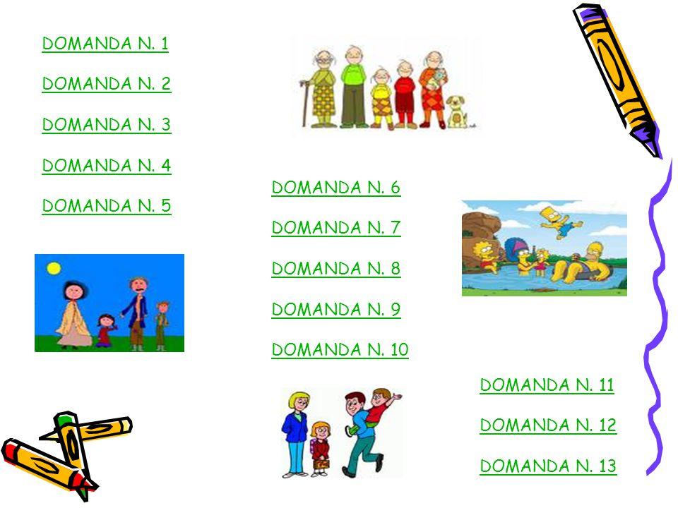 DOMANDA N.1 DOMANDA N. 2 DOMANDA N. 3 DOMANDA N. 4 DOMANDA N.