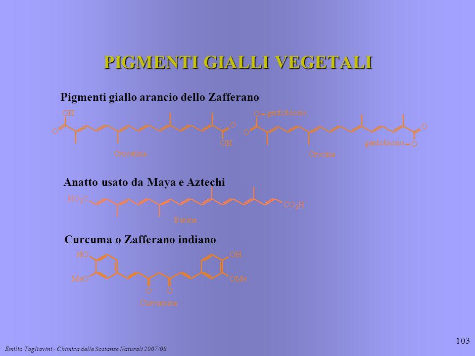 Emilio Tagliavini - Chimica delle Sostanze Naturali 2007/08 103 PIGMENTI GIALLI VEGETALI Pigmenti giallo arancio dello Zafferano Anatto usato da Maya e Aztechi Curcuma o Zafferano indiano