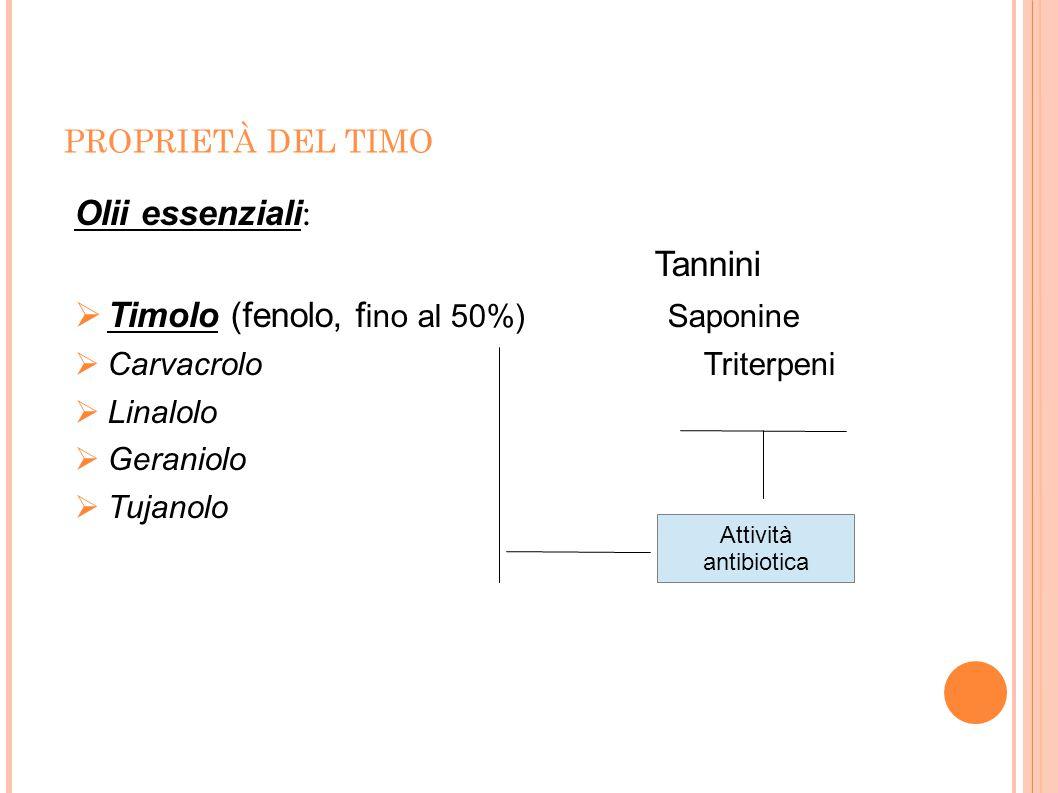 PROPRIETÀ DEL TIMO Olii essenziali : Tannini  Timolo (fenolo, f ino al 50%) Saponine  Carvacrolo Triterpeni  Linalolo  Geraniolo  Tujanolo Attivi