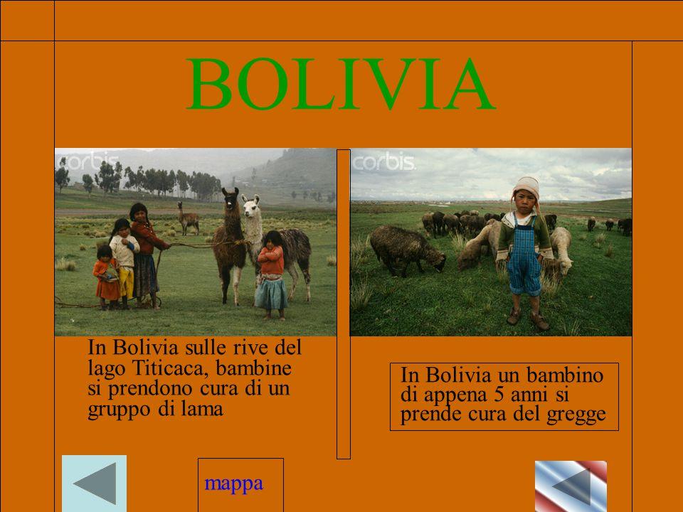BOLIVIA In Bolivia sulle rive del lago Titicaca, bambine si prendono cura di un gruppo di lama In Bolivia un bambino di appena 5 anni si prende cura del gregge mappa