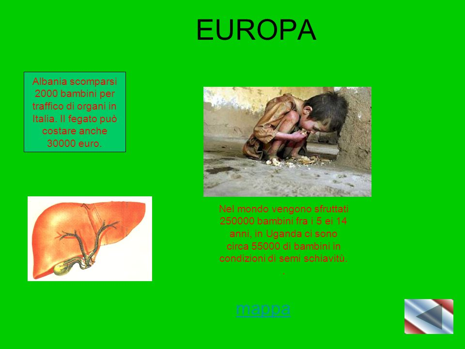 EUROPA Albania scomparsi 2000 bambini per traffico di organi in Italia. Il fegato può costare anche 30000 euro. Nel mondo vengono sfruttati 250000 bam