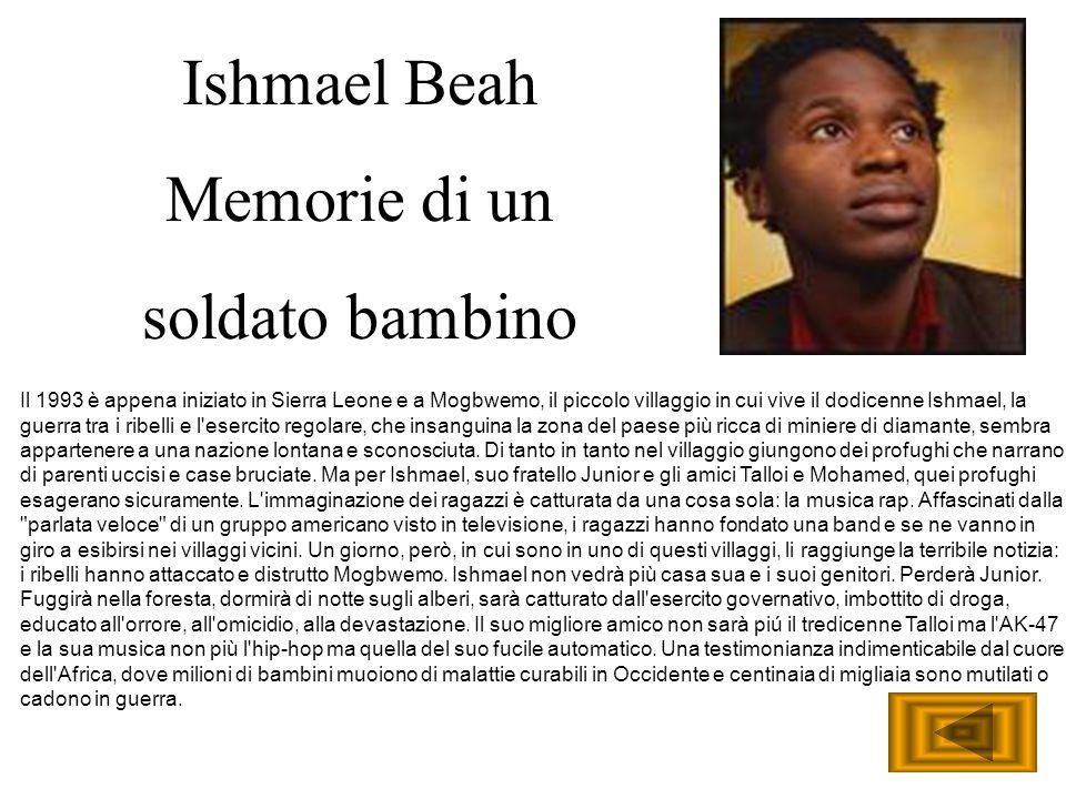 Il 1993 è appena iniziato in Sierra Leone e a Mogbwemo, il piccolo villaggio in cui vive il dodicenne Ishmael, la guerra tra i ribelli e l'esercito re