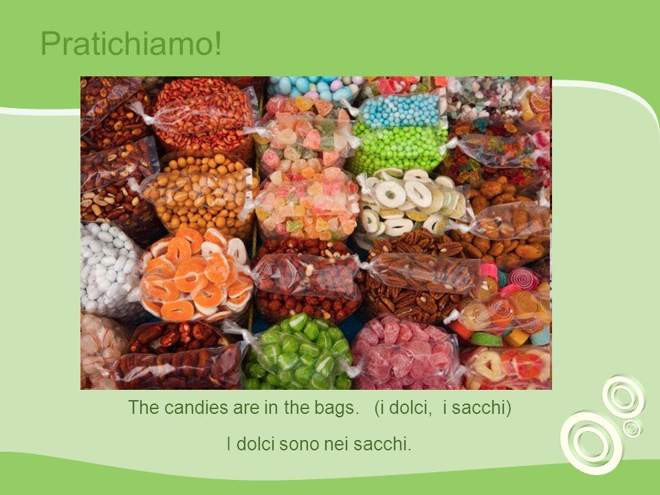 Pratichiamo! The candies are in the bags. (i dolci, i sacchi) I dolci sono nei sacchi.