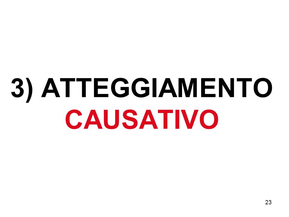 23 3) ATTEGGIAMENTO CAUSATIVO
