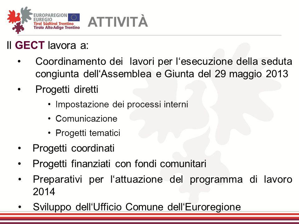 Il GECT lavora a: Coordinamento dei lavori per l'esecuzione della seduta congiunta dell'Assemblea e Giunta del 29 maggio 2013 Progetti diretti Imposta